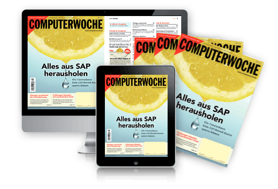 Alles aus SAP herausholen